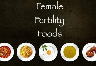 Female Fertility Foods