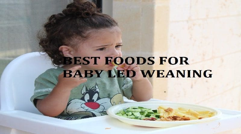 Best Foods for baby led weaning