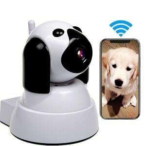 IP Dog Camera