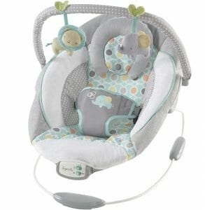 Ingenuity Morrison Baby Bouncer
